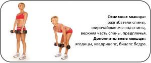 Упражнение становая тяга для набора веса