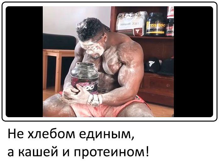 protein i kasha