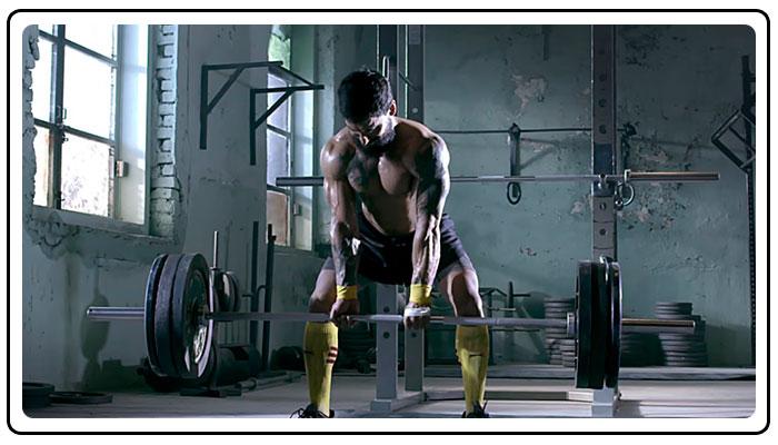 proteina v sporte