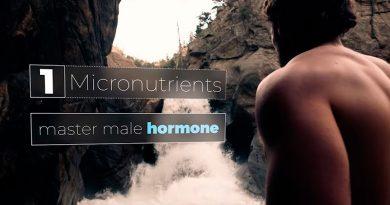 Testosteronovyye bustery